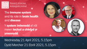 The immune system and its role in brain health and disease