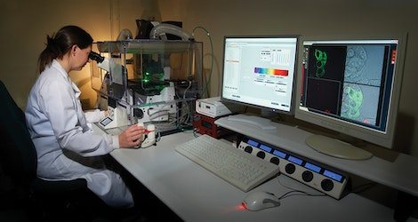 Confocal microscopy laboratory