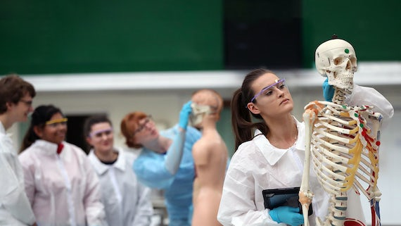 Student with an anatomical skeleton
