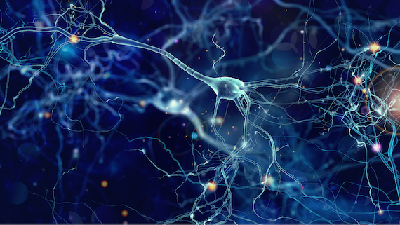 An impression of synapses in the brain