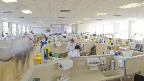 Inside the School of Dentistry
