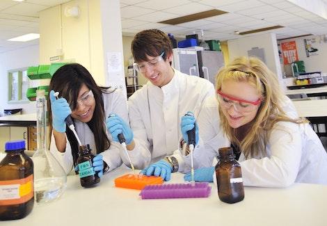 Cardiff undergraduates acquire a high level of laboratory skills
