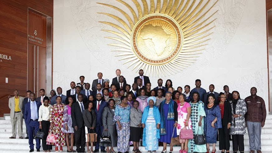 Dr Edwin Egede (pictured centre, back row) with members of the African Union Commission ad hoc experts group.