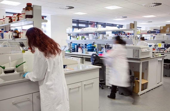 A photo of some of the lab team at work