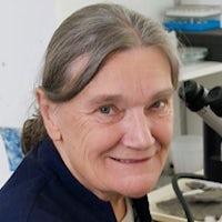 Professor Dianne Edwards MA, PhD, ScD(Cantab) CBE FRS FRSE FLS FLSW