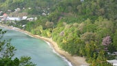 A bay in Tobago, blue see and green trees