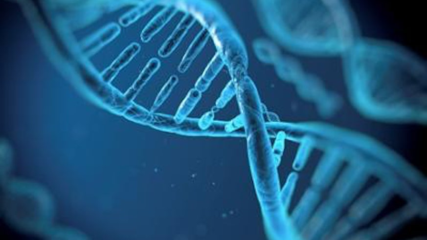 Cash boost for synthetic biology research