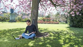 PG student studying in the park