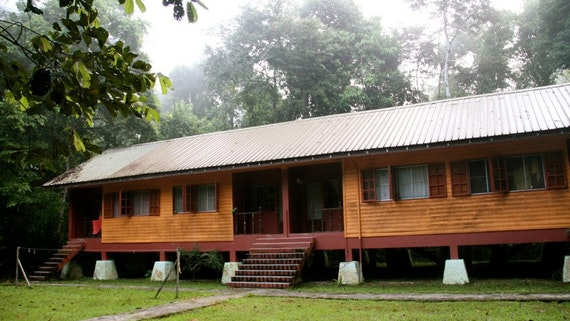 Scientists studio accommodation at Danau Girang