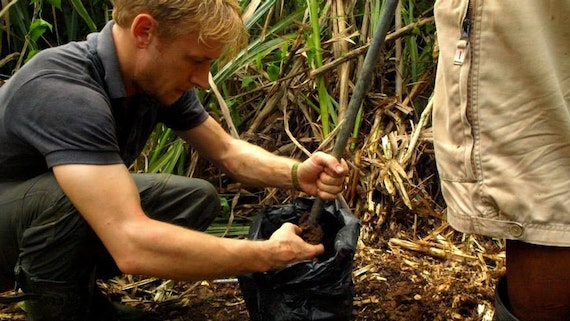 PhD student examining plant roots in the forest