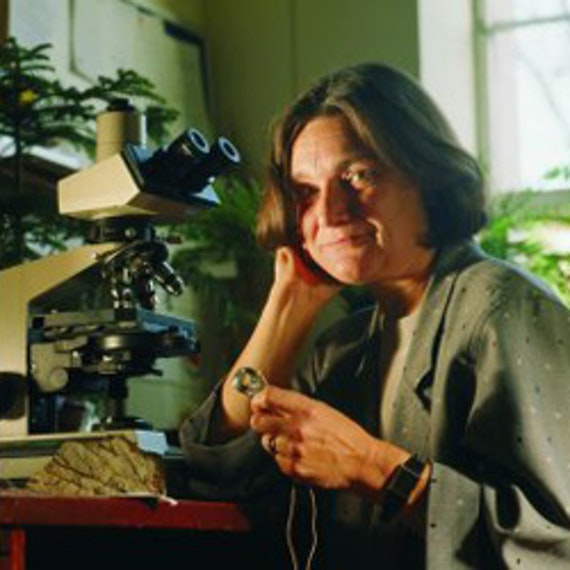 Professor Dianne Edwards