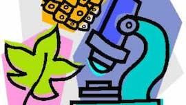 biology clipart