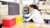 BD FACSAria III cell sorter