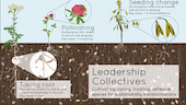 Leadership Collectives