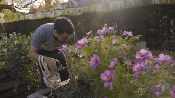 Gardener at the Grange Pavilion