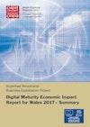 Summary Digital Maturity Economic Impact Report 2017