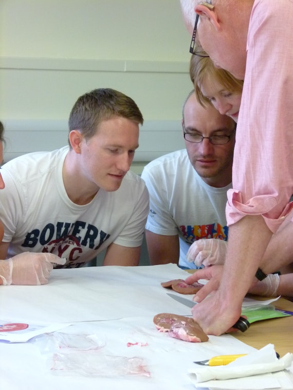 Participants get hands-on during the modules