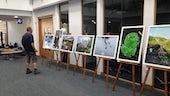 duress exhibition