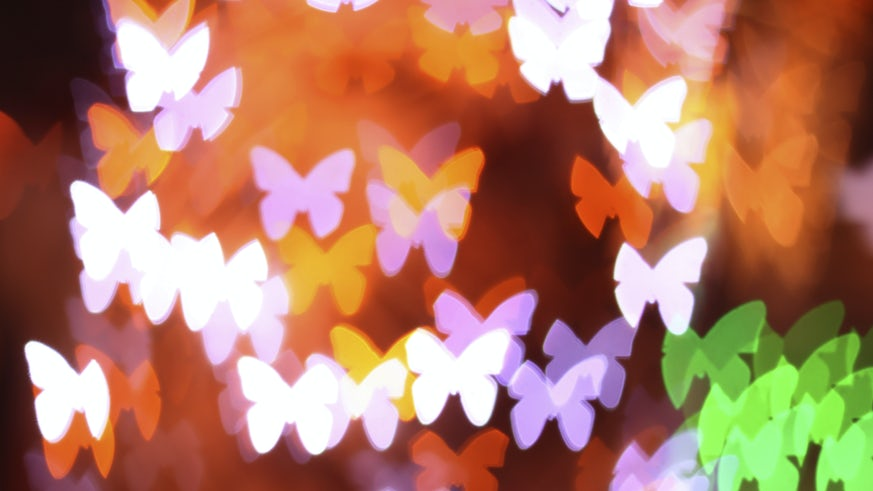Butterflies with Bokeh effect