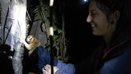 Kirsty Franklin releasing a slow loris back into the wild