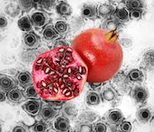 Pomegranate and herpes
