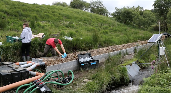 Two people taing water measurements from a experimental stream