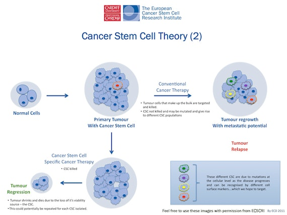 stem cell research legislation and related Consider now the following ten problems with embryonic stem cell research gaining more ground by passing legislation in of problems related to.