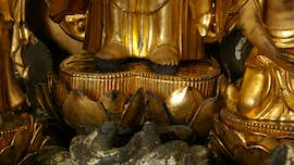 Gold statue detail