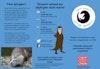 Otter Project leaflet - Welsh language