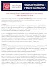 Ysgoloriaethau Patagonia Scholarships - Information/Gwybodaeth