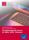 Summary Digital Maturity Survey 2018