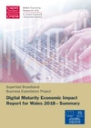 Summary Digital Maturity Economic Impact Report 2018