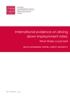 International Evidence on Driving Down Imprisonment Rates
